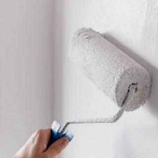 Utilite D Une Sous Couche D Impression Mur Avant Peinture Metaltop Peinture